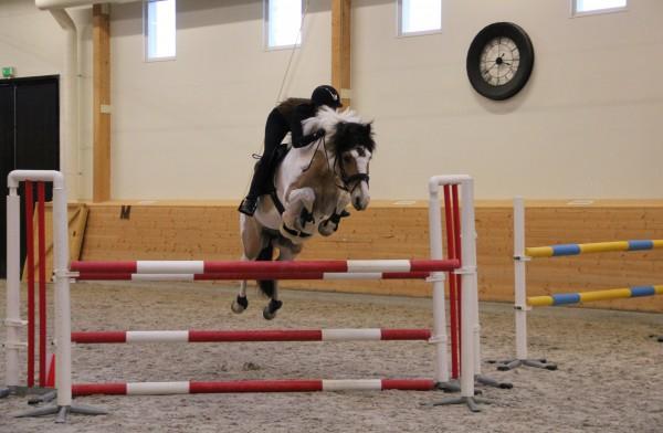 pay and jump och rulle 2 061