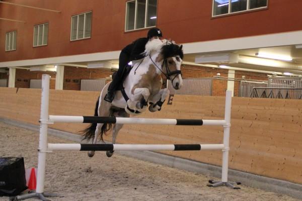pay and jump och rulle 2 064