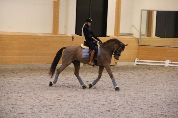 Mattias träning okt 2014 004