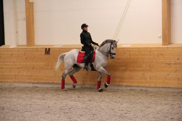 Mattias träning okt 2014 022