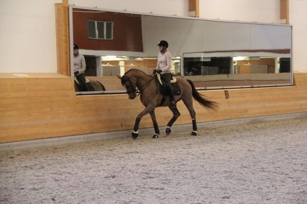 Mattias träning okt 2014 027