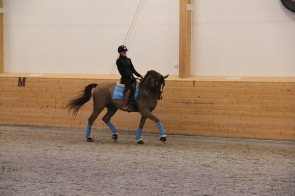 Mattias träning feb 15 006