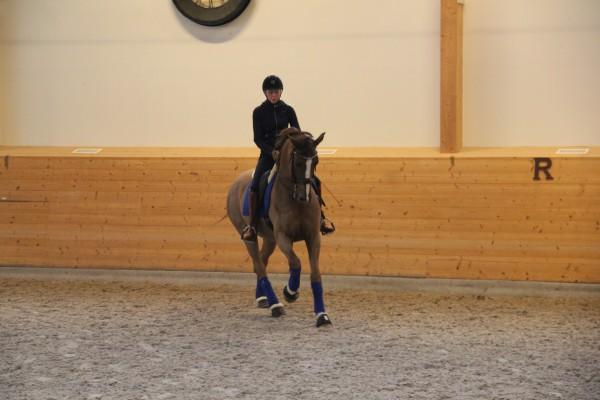 Mattias träning feb 15 015