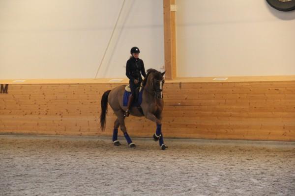 Mattias träning feb 15 016