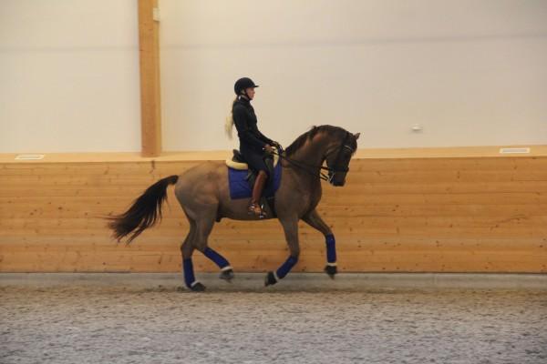 Mattias träning feb 15 018